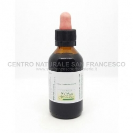 Estratto idroalcolico di tarassaco (taraxacum officinale) 100 ml